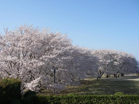 Otsukayama Park