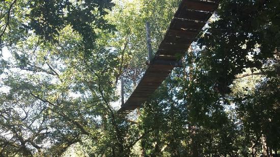 Acc s cabane bellevue et son spa photo de cabanes perchees des pyrenees argel s gazost - Du bruit dans la cuisine pau ...