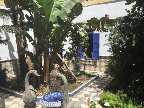 Riad du Figuier: Midi moins le quart dans le patio du Riad