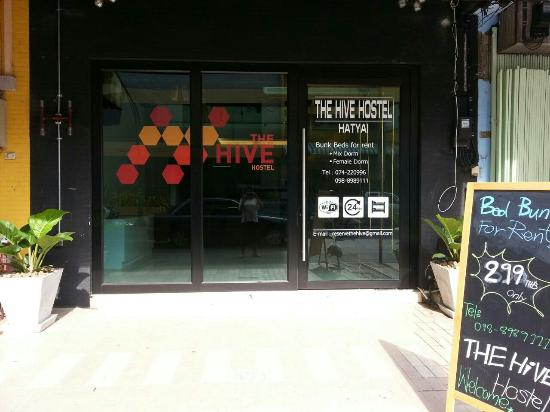 The Hive Hat Yai
