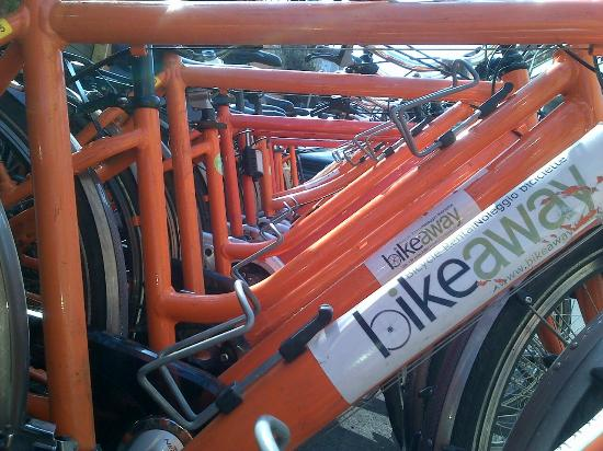 Bikeaway Bike Rental