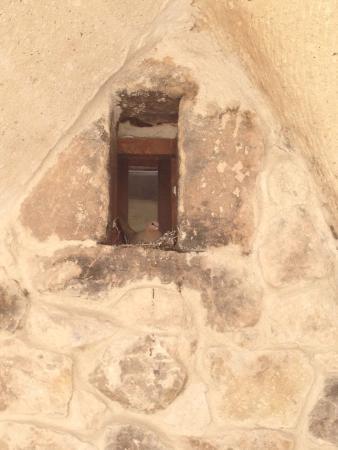 Tafoni Houses: Tafoni'de bahar