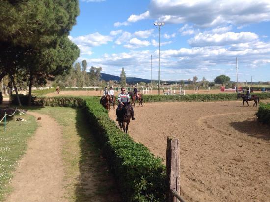 Альбиния, Италия: Maneggio CM Equitaziona