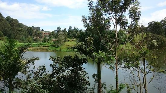 Bunyonyi Overland Resort: vistas del lago