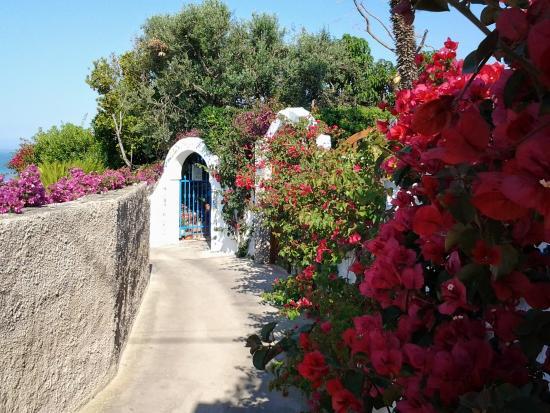 tra bianchi muri e bouganvilee - Picture of Sant\'Angelo (Serrara ...