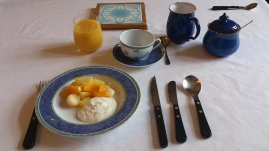 Glan y Dwr Bed & Breakfast: Starting breakfast with fresh fruit and yoghurt - 14th May 2015.