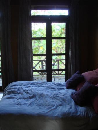Sepilok Forest Edge Resort: Forest Edge