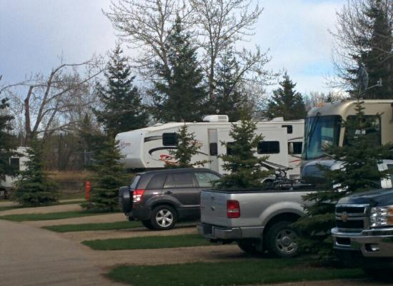 Lions Campground: Spring at the park 2015