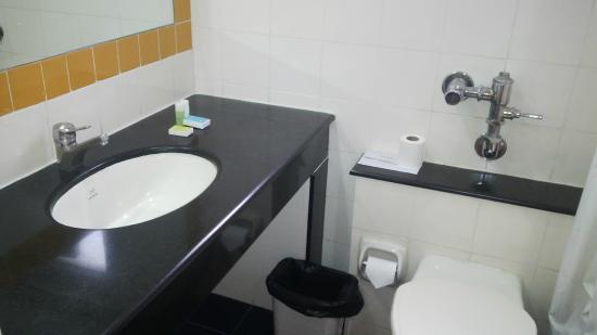 Halcyon Condominiums : Bathroom