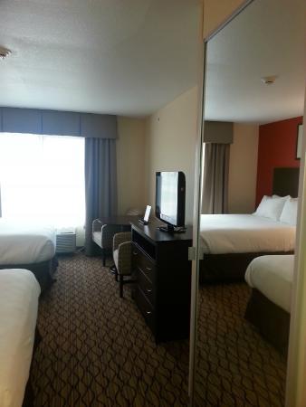 Holiday Inn Express Niles : Room 219