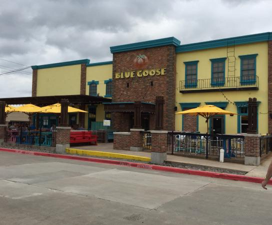 Picture of blue goose cantina plano for Plano restaurante