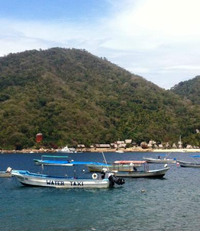 Yelapa English Spanish Institute : Beautiful picture from our lunch table
