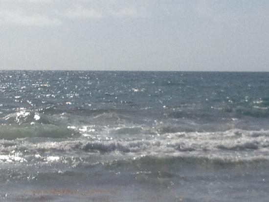 Ebb Tide Oceanfront Resort Photo