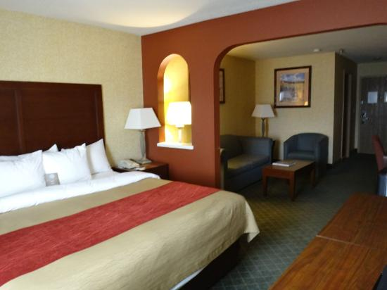 Comfort Inn & Suites Los Alamos: room 208 - king suite