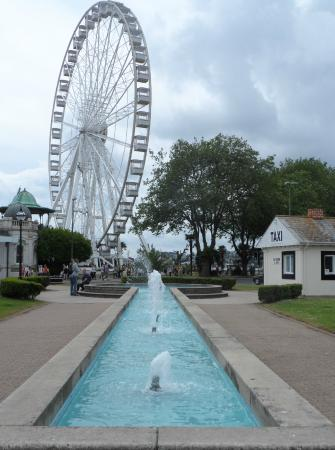 Cary (Torquay) Gardens : Cary Gardens and the wheel in the background
