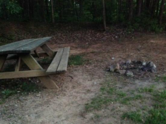Asheville West KOA: decrepit picnic table & outdated, small firepit