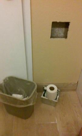 Wyndham Garden Romulus Detroit Metro Airport: Holder fell out of wall, waste basket to hold door shut.