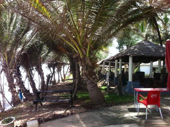 Leybato Hotel: Garden with hammocks