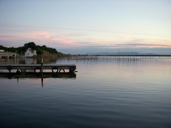 Visit Albufera / Paseos en barca y Rutas en bici