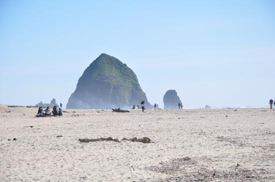 Webb's Scenic Surf Motel: Hay Stack Rock, Cannon Beach just a walk down the beach
