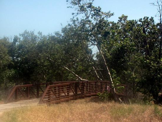 Sycamore Grove Regional Park
