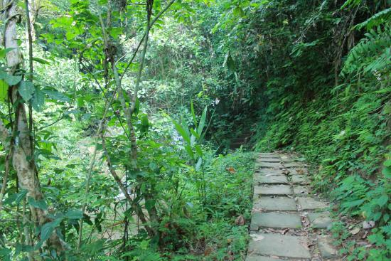 Tad Thong Waterfall : The Route
