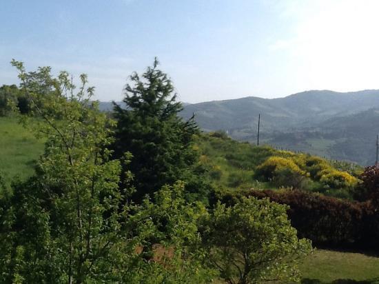 B&B Rosso del Chianti : Aussicht von der Terrasse