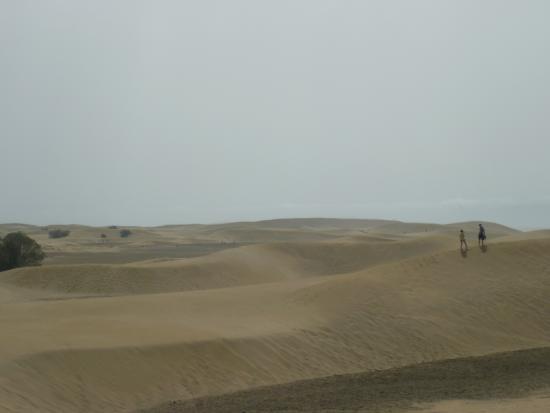 IFA Interclub Atlantic Hotel: dunes de Maspalomas