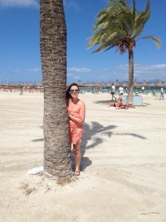 La plage devant le restaurant la boh me bild von arenal beach javea tripadvisor - La boheme javea ...