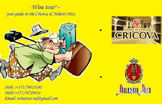 Wine Tour -  Your Guide to the Cricova & Milesti Mici