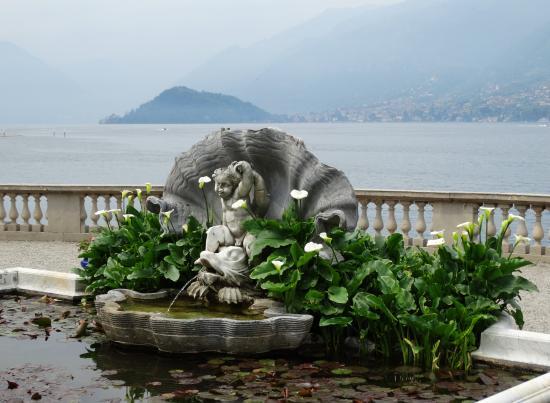 View picture of i giardini di villa melzi bellagio tripadvisor - Giardini di villa melzi ...