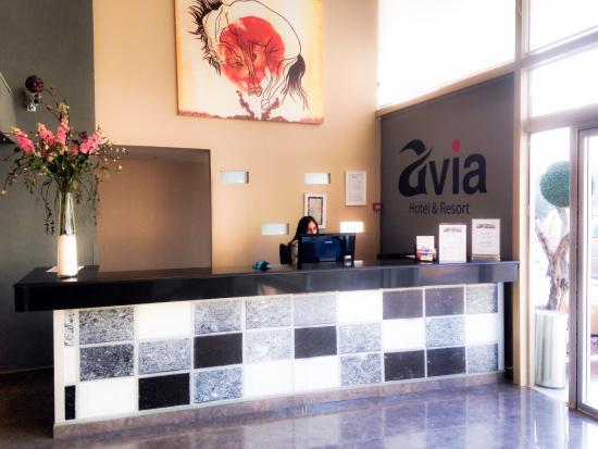 Avia Hotel : reception