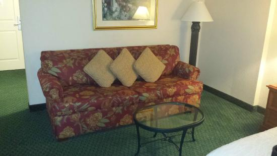 Hilton Garden Inn Dallas / Market Center: couch in room