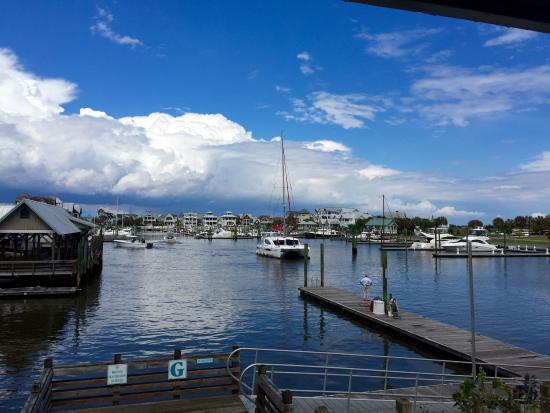 Mojo's on the Harbor: photo1.jpg
