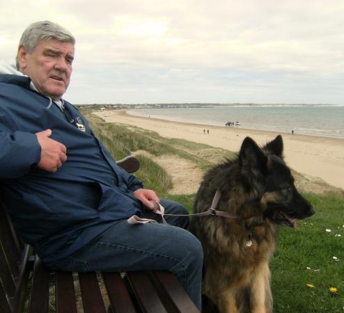 Seagulls  Bridlington: lovely dog walking area and quiet beach