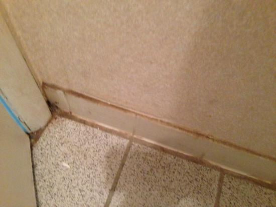 Days Inn Roanoke Civic Center: Bathroom floor