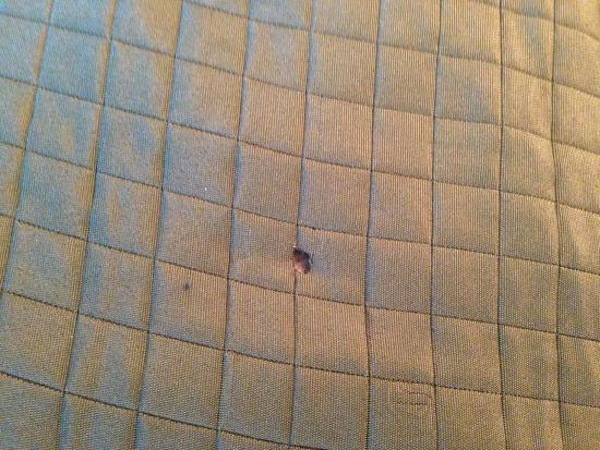Days Inn Roanoke Civic Center: Bedspread had cigarrette burn and we were in non-smoking room