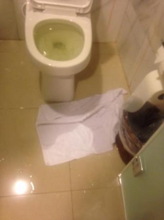 Luxury Bahia Principe Esmeralda Don Pablo Collection: Toilet overflowing 3 rd time