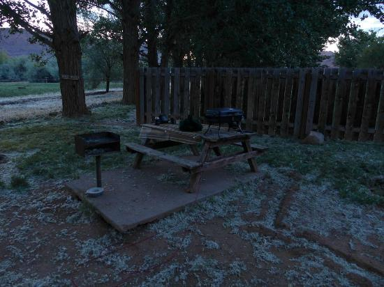 Slickrock Campground : Grill, picnic table, and big cottonwood freest