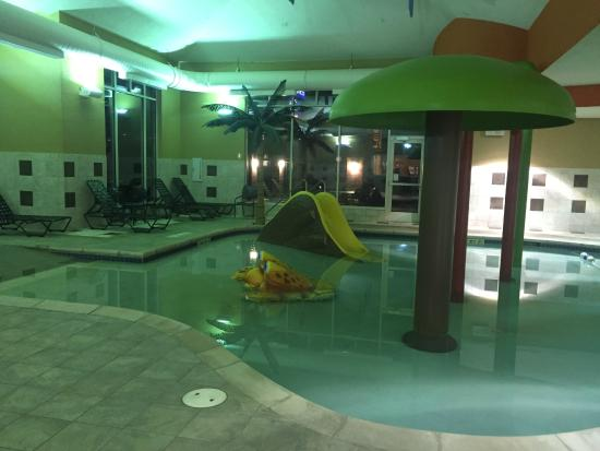 sorry I forgot a bathing suit! - Picture of Hilton Garden Inn ...