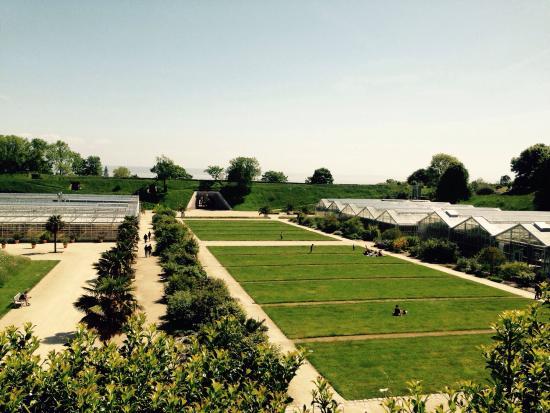 1001 roses photo de les jardins suspendus le havre tripadvisor - Les jardins suspendus le havre ...