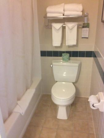 Comfort Inn & Suites : Bathroom