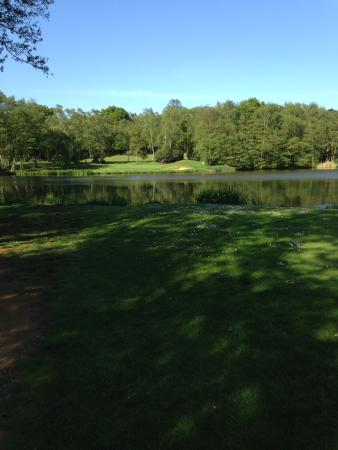 Silvermere Golf and Leisure: A view of the 17th hole