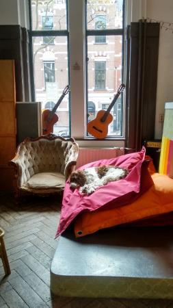 Hostel Room Rotterdam: Lexie