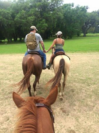 Rockin N Stables Tallahassee Fl Top Tips Before You Go