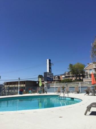 Edgewater Beach Motel : Pool area