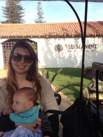 Santa Cruz, Şili: Recorrido por la Viña