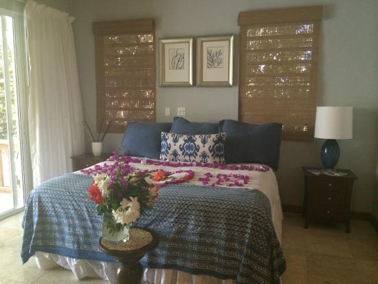 Meads Bay Beach Villas: Engagement