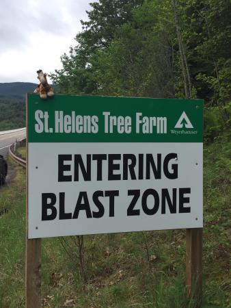 Spirit Lake Memorial Highway: Blast zone