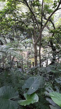 Fuyang Eco Park